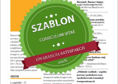 Szablon - 03 - CV - orange