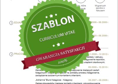 Szablon - 05 - CV - grey